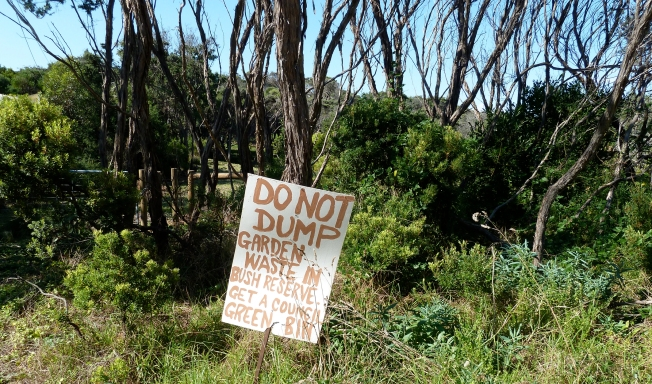 Dumping_waste