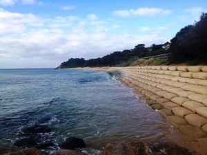 portsea beach 7th June 2012